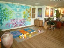 Studio Xynergy Holland